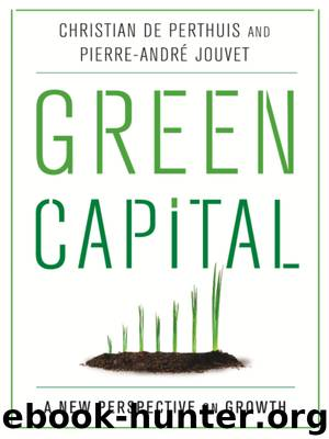 Green Capital: A New Perspective on Growth by Christian de Perthuis Pierre-André Jouvet Michael Westlake