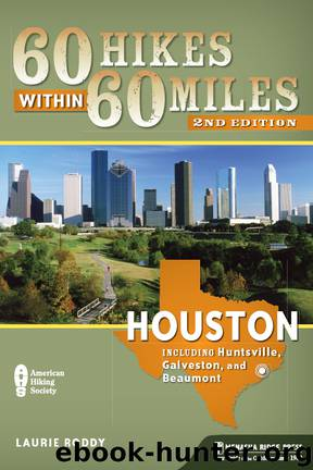 Houston by Laurie Roddy