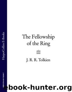 The Fellowship of the Ring (The Lord of the Ring, #1) by J.R.R. Tolkien