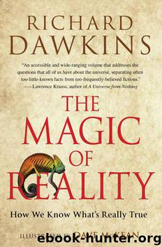 The Magic of Reality by Dawkins Richard & McKean Dave