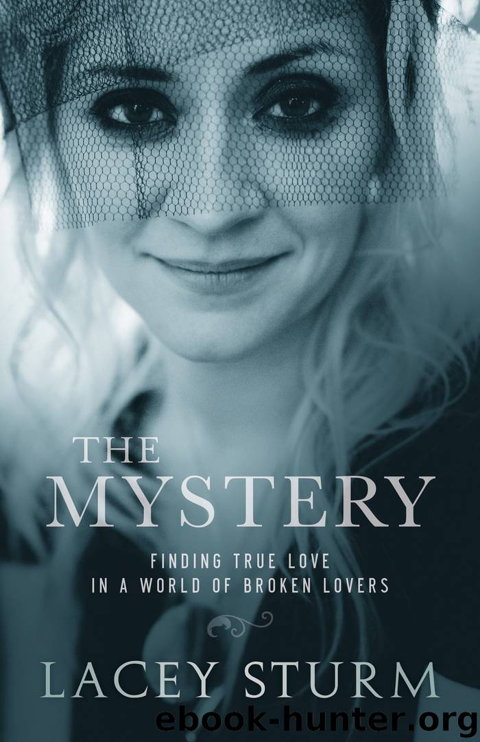 The Mystery by Lacey Sturm